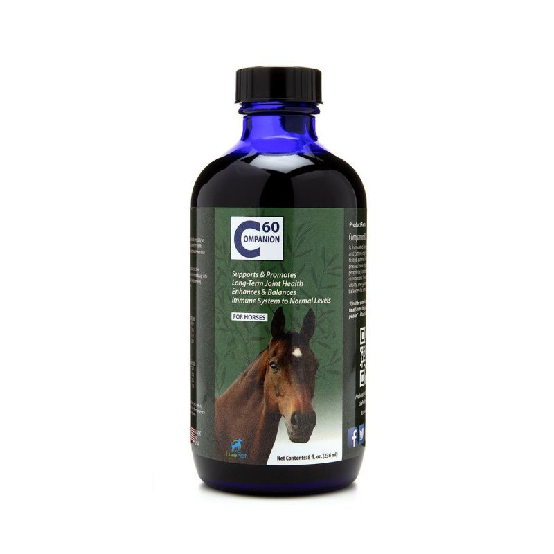Companion60 Horses 236ml - Front