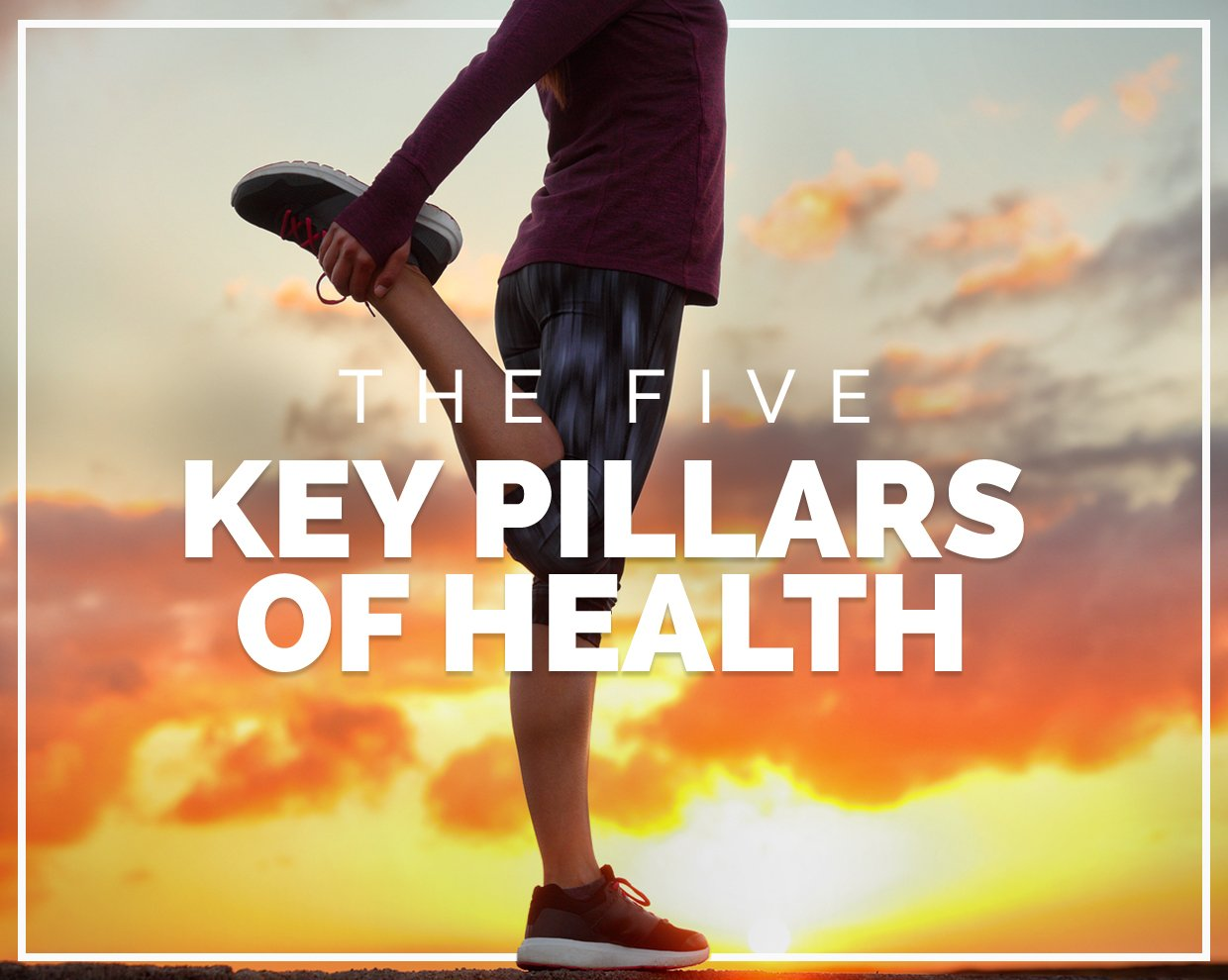DRESS protocol: The five key pillars of health