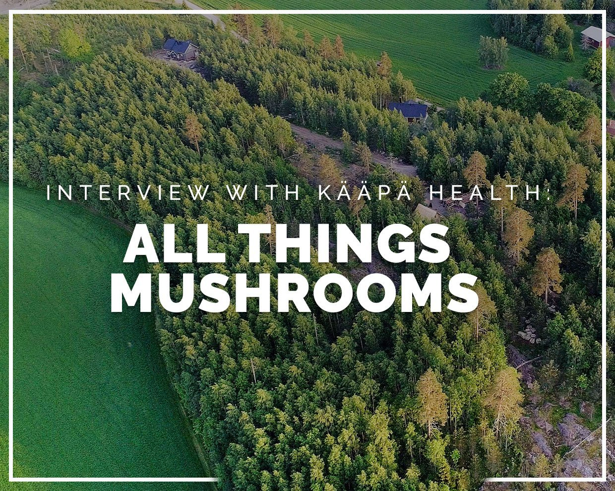 INTERVIEW WITH KÄÄPÄ HEALTH: All things mushrooms