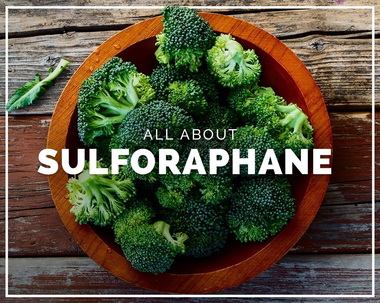 All about Sulforaphane